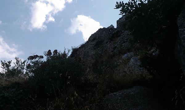 IMAG3458