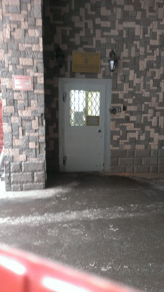 IMAG0445