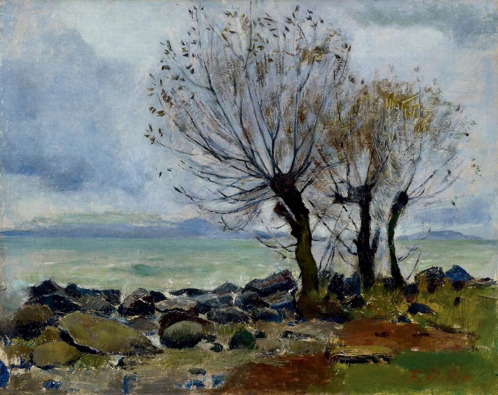 Ивы на берегу Женевского озера. Фердинанд Ходлер / Ferdinand Hodler. 1882