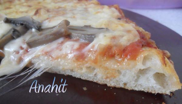 Amerikanskaja  pizza kusok s gribami