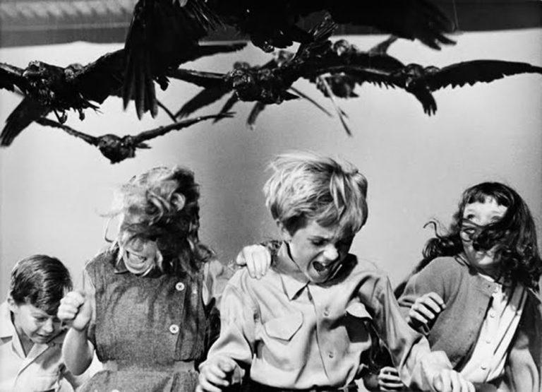 filmfuglene-768x555