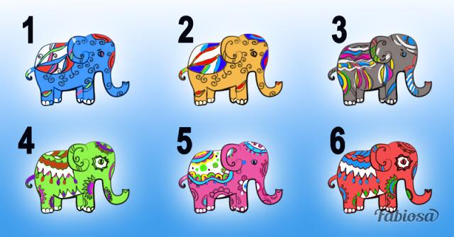 rsmae-auaml-elige-elefantes_43aae9e6bd33c12b9637631d43a0aaa5