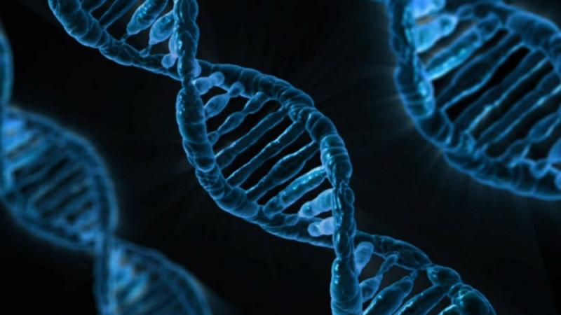 Гены-1000x563