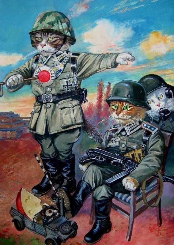Военные коты в форме