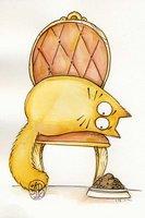 abra_cat_abra