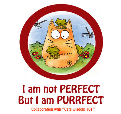 purrfect_but_not_perfect___help_needed