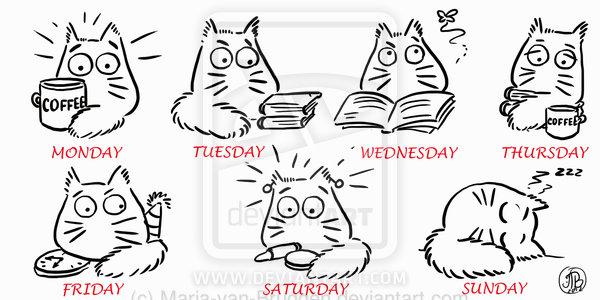 working_week