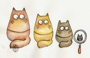 cat_reshkas