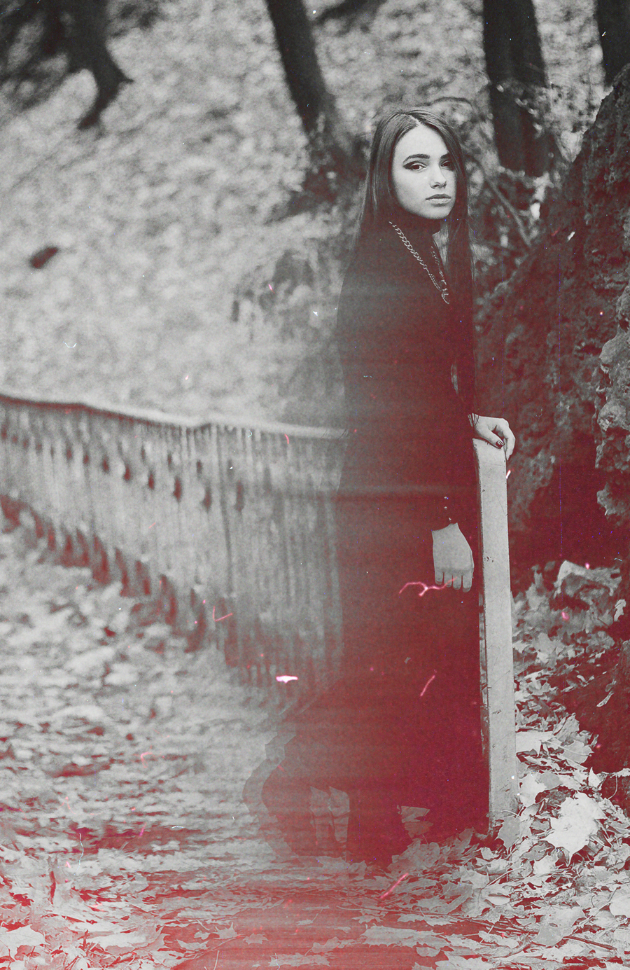 _MG_6698 bw winter dawn  film texture