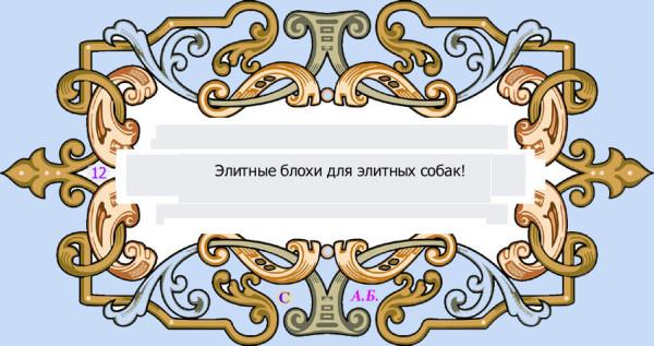 винь12