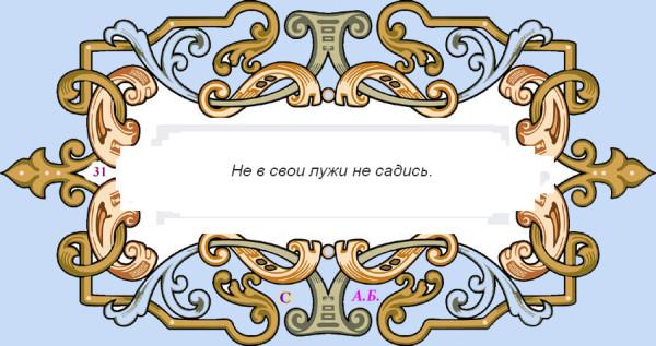 винь31