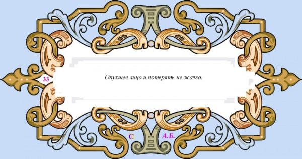 винь33