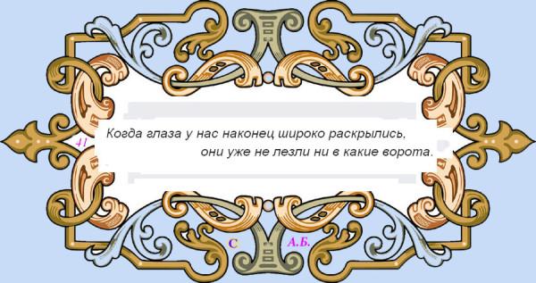 винь41