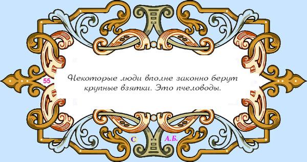 винь55