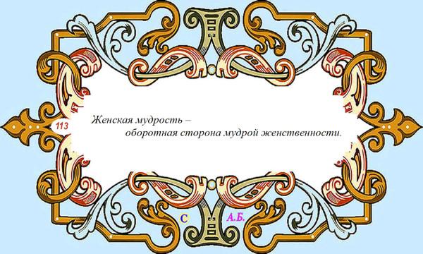 винь113