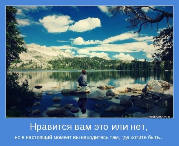motivator-63980
