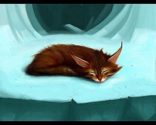 котенок, рисунок