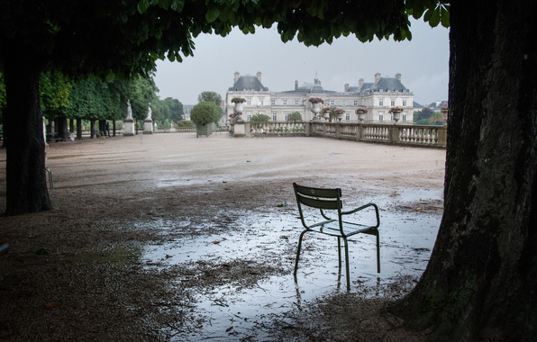 дождь (14)