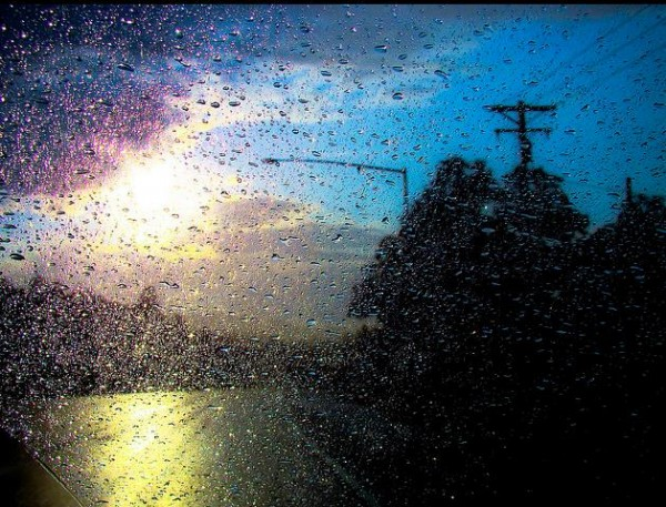 дождь (24)