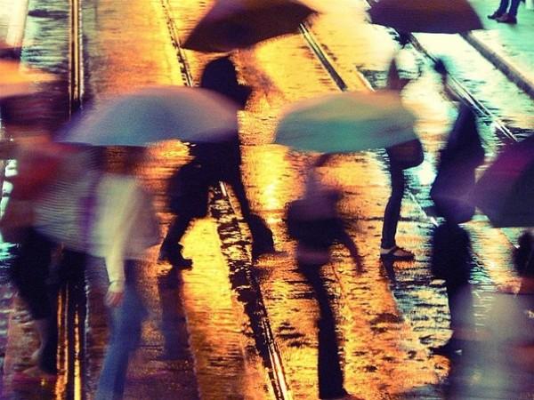 дождь (46)