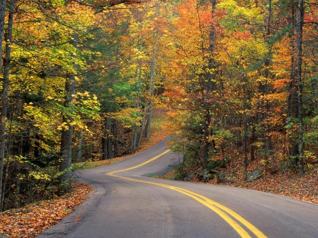 осень, жизненнный опыт, дорога, дороги
