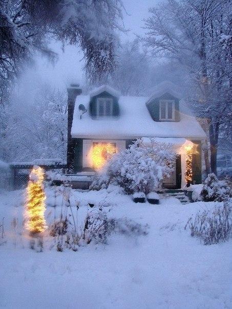 Новый год, зима, елки, чудеса, шарики-игрушки (32)
