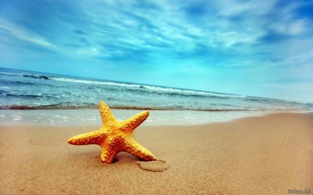 я выбираю блаженство, море, блаженство, песок, морская звезда, берег моря, позитив