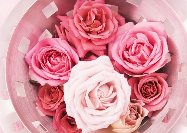 роза, цветы, букет, розы
