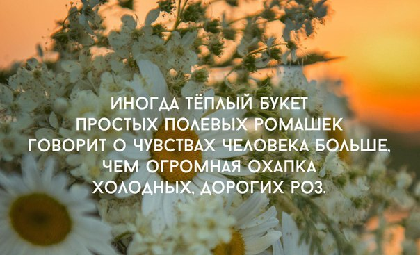 Мотивация в картинках (14)