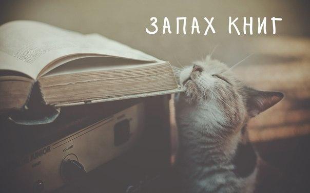 Книга афоризмы цитаты