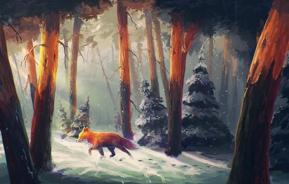 lisa-les-sneg-derevya-zima
