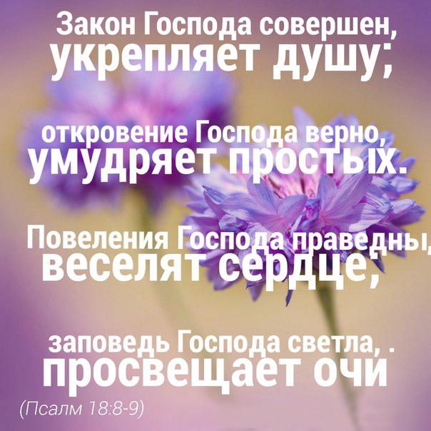 lHmeG03u_oM