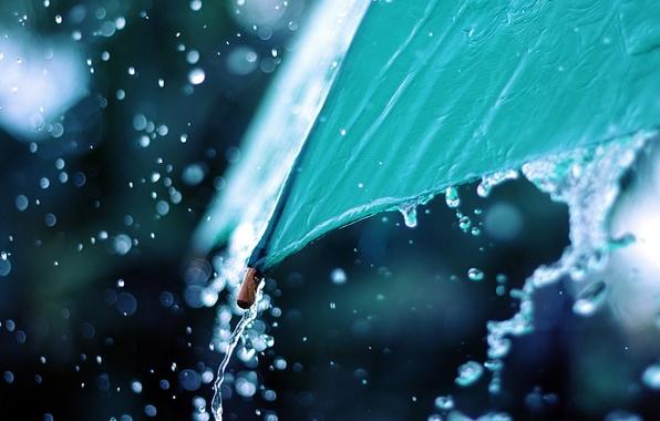 dozhd-zont-makro-voda-foto