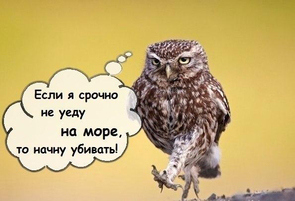 Y_bBftLNqhE.jpg