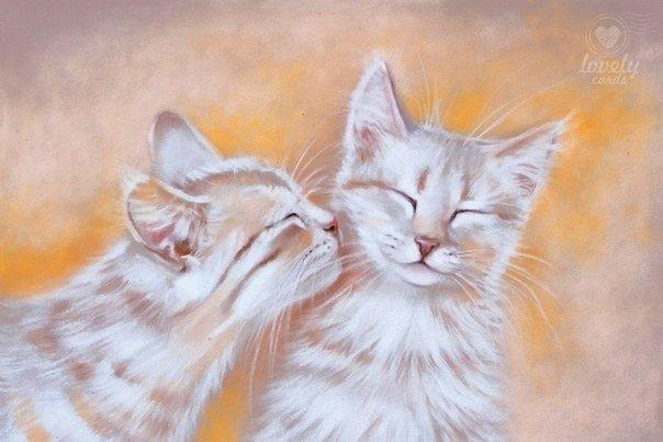Флот, два кота картинки рисованные