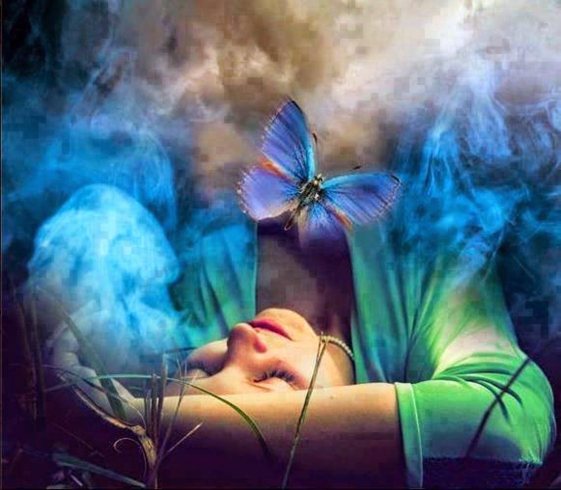 transformar mulher borboleta.jpg