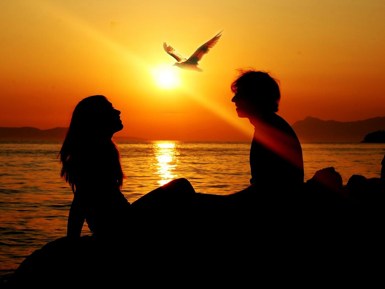 girl-sunset-summer-ray-love-sea-man-bird-freedom-silhouette-sun-sea-gull.jpg