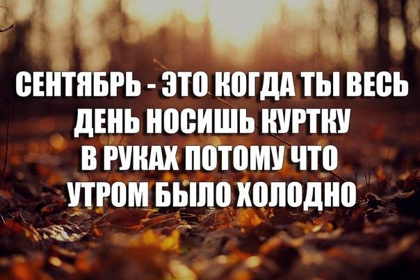 3907233_original.jpg