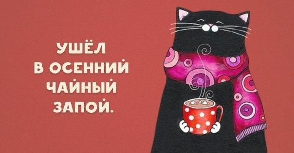 _qN-TSpcu7g.jpg