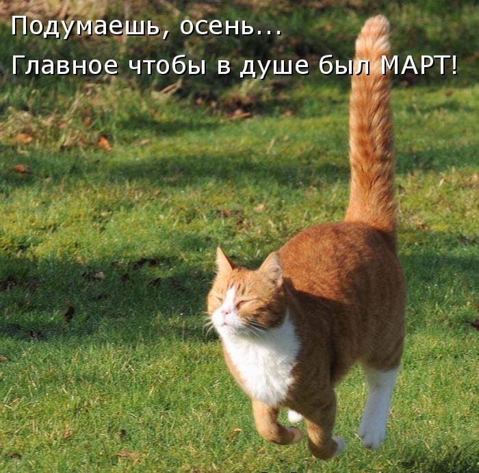 http://ic.pics.livejournal.com/anchiktigra/18346223/4243605/4243605_original.jpg