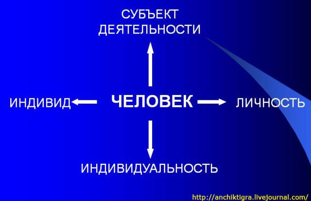 Акаромектин Инструкция По Применению Для Животных.Doc