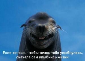 Люди которые всегда улыбаются психология
