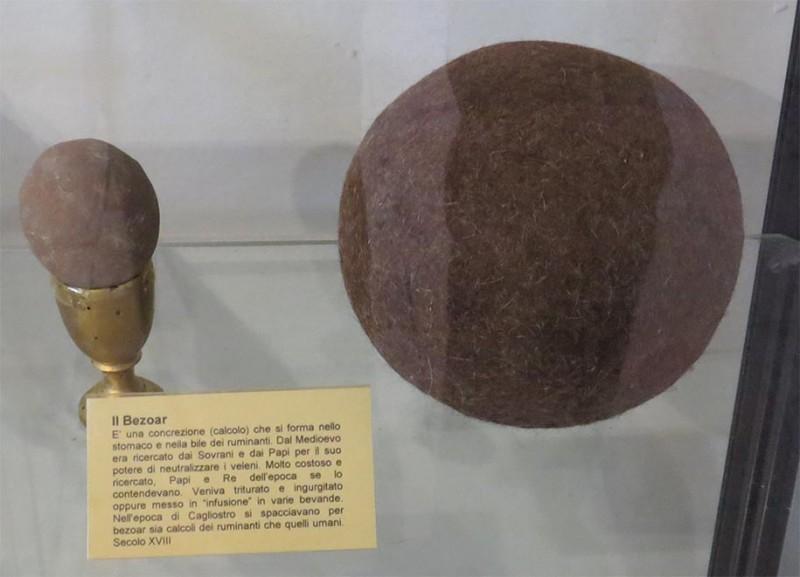 Слева уже камень, справа ещё волосяной шар (трихобезоар). Фото из аптечного музея в Сан-Лео. Витрина бликует, не взыщите.
