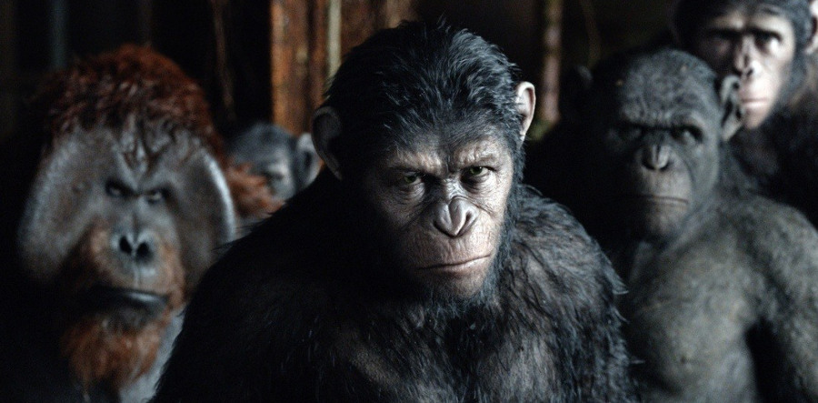 kinopoisk.ru-Dawn-of-the-Planet-of-the-Apes-2438103