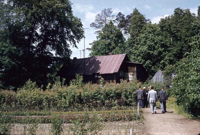 Meninthegarden