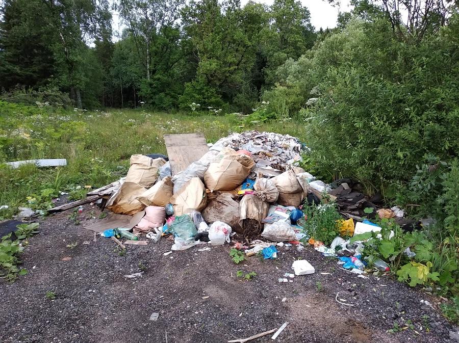 1 мусор хомяки 6 км.jpg