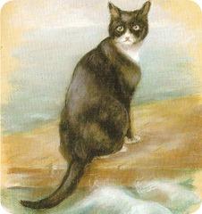 кот оскар