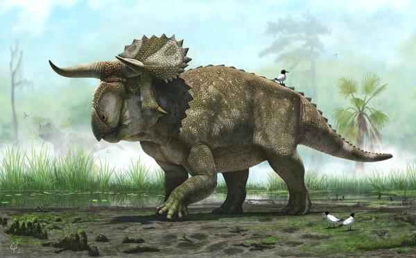 У этих двух групп динозавров передние конечности устроенны так, что при ходьбе кисти