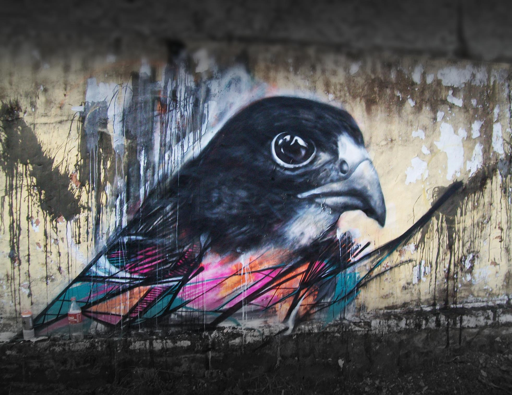 graffiti-birds-by-brazilian-001