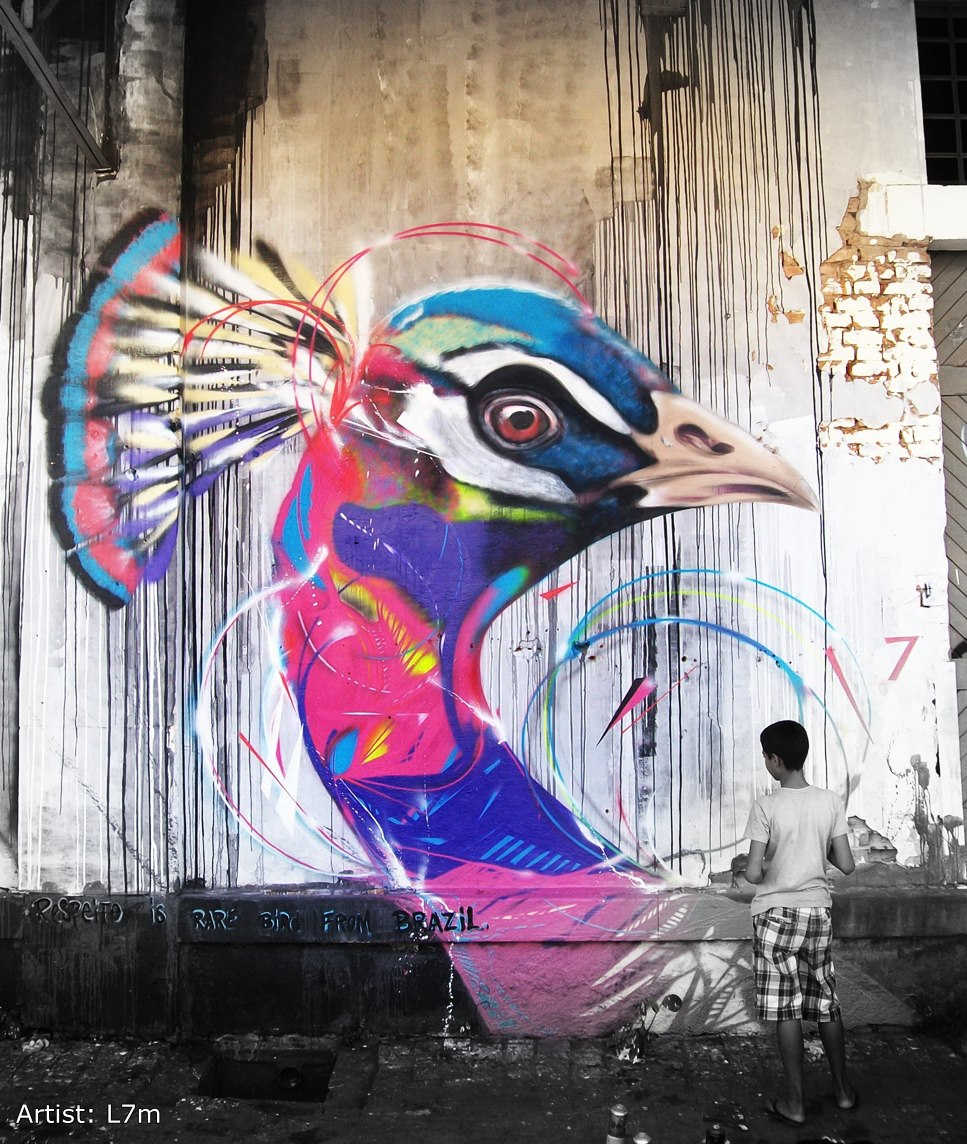 graffiti-birds-by-brazilian-002